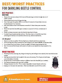 Best/Worst Practices for Darkling Beetle Control